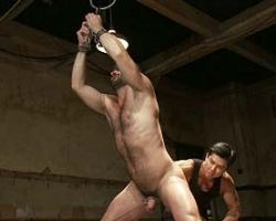 Muscular gay tied up and anal abused