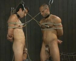 See these kinky men ot tortured by male dominatrix