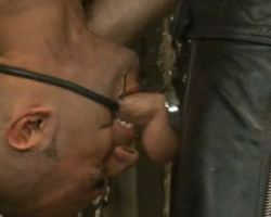 Tied gay screaming till he cant no longer take the hurt and force cock feeding
